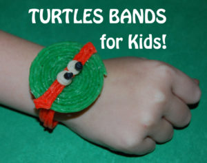 WS-Turtle-Bands-1024x810
